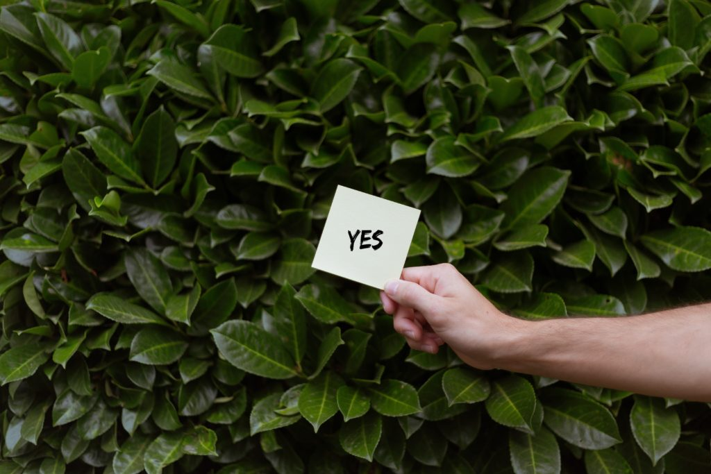 A person holding a white card with a Yes print with the background of green Bay laurels