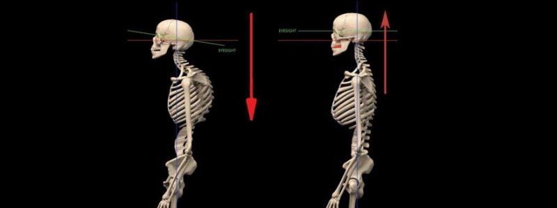 teeth and posture